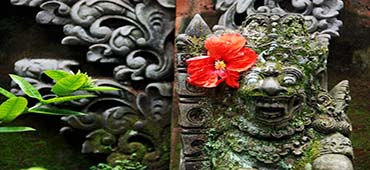explore bali art and nature tour