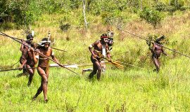 discover west papua culture