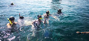bali snorkeling tour lembongan