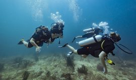 best diving tour