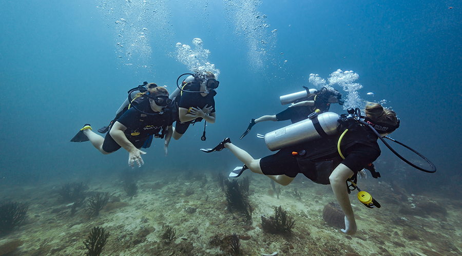 best diving tour