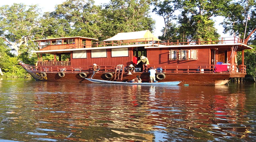 orangutans tour borneo