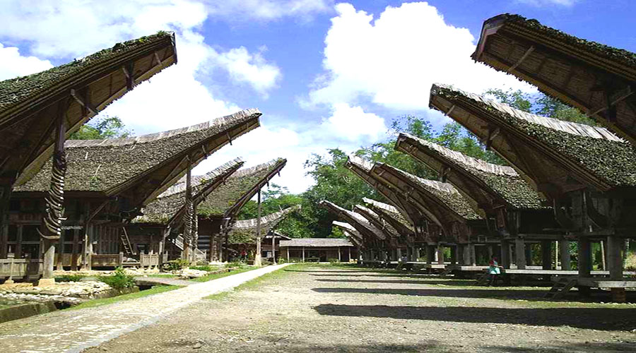 toraja house traditional