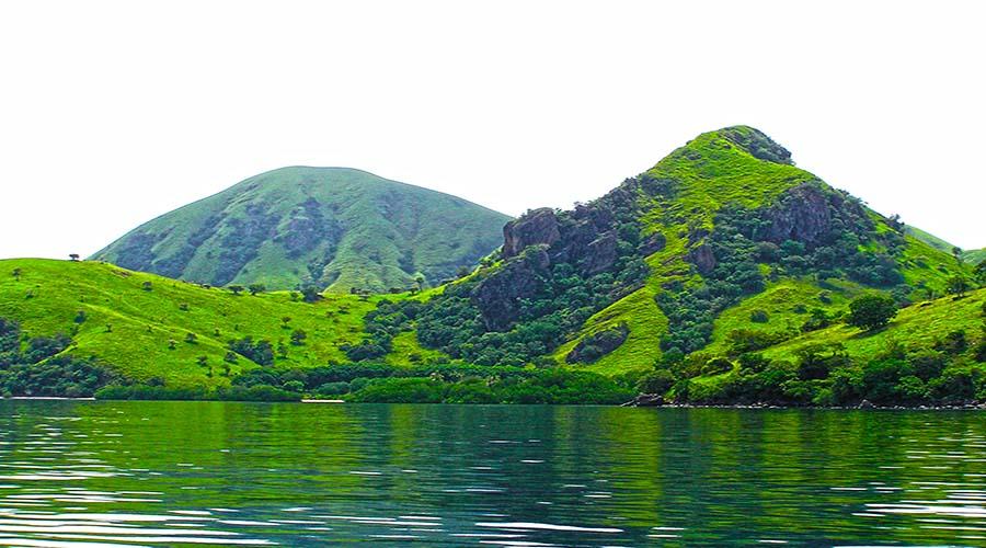 komodo island to see komodo dragon