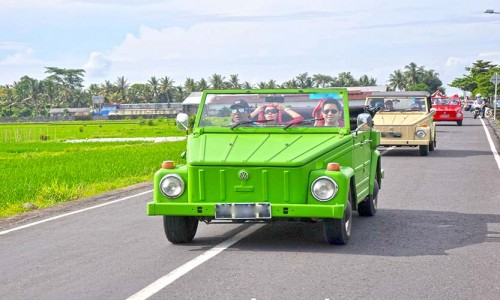 bali tour by vw safari