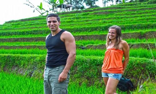 jatiluwih rice terraces trekking tour