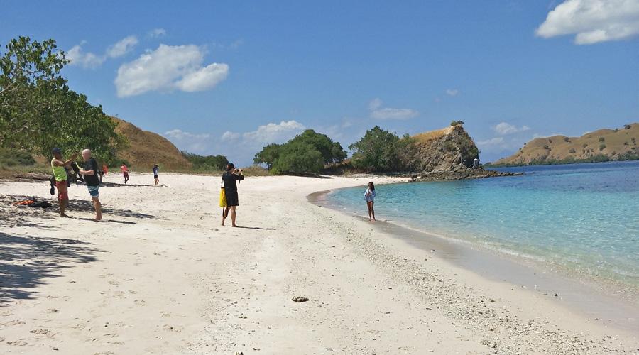 pink beach komodo national park