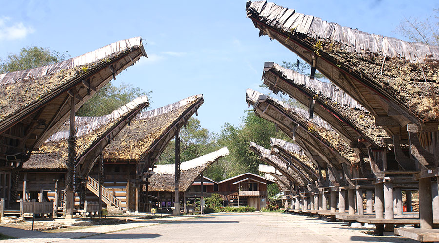 toraja traditional house tours