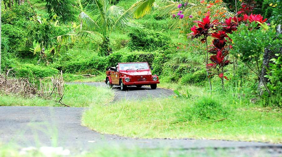 bali tour by vw safari